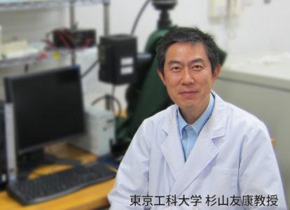 改良6出なしの還元主成分であるST13株は、東京工科大学応用生物学部の杉山友康教授が一般的な土の中から発見した放線菌の一種で、その基礎研究を基に、弊社が開発研究を行って実用化しました。